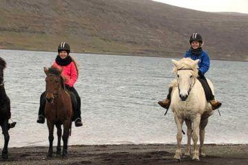 Reitausflug auf Islandpferden im Bauerngasthof Heydalur auf Ihrer individuellen Island Rundreise